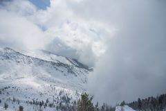 Snow cloud covers the mountain peaks and trees Royalty Free Stock Image