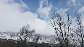 Snow clouds over mountains, time lapse. Winter landscape, mountain slope with trees covered with fresh snow, time lapse stock footage