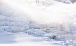 Snow coated Mammoth Hot Springs in Yellowstone National Park stock photos