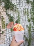 Snow cone stock image