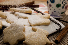 Snow cookies Royalty Free Stock Images