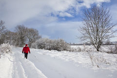 Snow on a country lane - England Royalty Free Stock Images