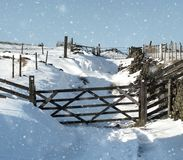 Snow on a country lane with falling snow wooden gates and fences Stock Photography