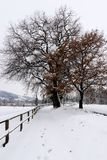 Snowy landscape fence and footpath. Snow in the countryside snowy footpath stock photography
