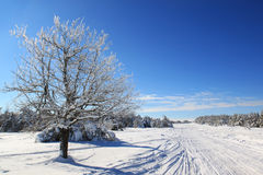 Snow-covered валы Стоковое Изображение
