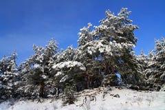 Snow-covered валы Стоковое Изображение RF