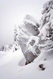 Snow-covered утесы в Ural. Siberia.Taiga. Стоковое Фото