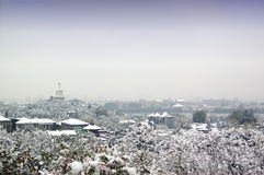 Snow-covered. The landscape covered by snow Royalty Free Stock Images