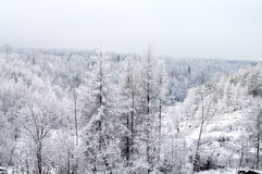 Snow-covered Royalty Free Stock Image
