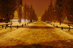 Snow-covered alley at night in Poznan Stock Photo