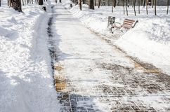 Snow-covered alley in the park in the winter royalty free stock photo