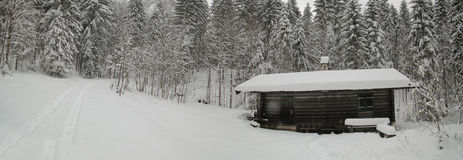 Snow covered alpine hut in a coniferous forest in Chiemgau Alps, Germany.  Royalty Free Stock Images
