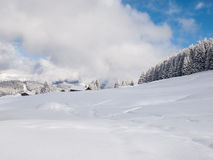 Snow Covered Alpine Meadow Royalty Free Stock Photos