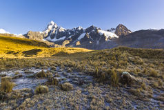Snow-covered Andes mountains at sunrise and frozen grass meadow. In early morning stock images