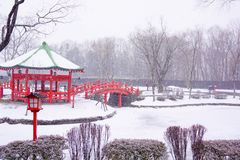 Snow-covered arbor in winter Royalty Free Stock Photography