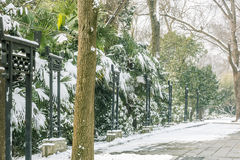 Snow covered The art world of Red Mansions Stock Image