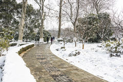 Snow covered The art world of Red Mansions Royalty Free Stock Photography