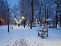 Snow-covered bank in het stadspark met de verzoening van de inschrijvingsbank royalty-vrije stock foto's