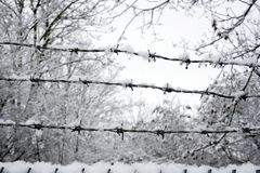 Snow covered barb wire fence Stock Photography