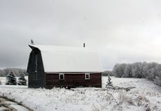 Snow covered barn in rural Manitoba stock photos