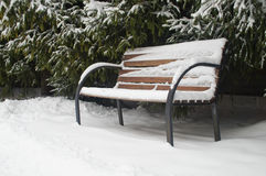 snow-covered bench Royalty Free Stock Photos