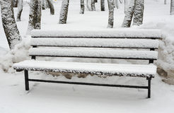 Snow-covered bench Stock Images