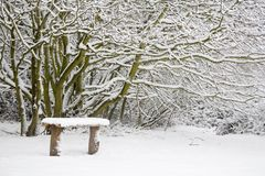 Snow covered bench Royalty Free Stock Images