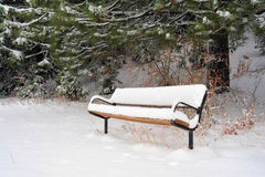 Snow Covered Bench. A sitting bench covered with snow in early winter with pine trees in the background Royalty Free Stock Images