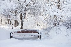 Snow covered bench, bad weather concept. Beautiful snowfall winter park trees landscape. Snow covered bench, bad weather concept. Beautiful snowfall winter park Royalty Free Stock Photos