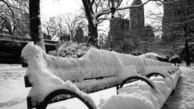 Snow covered bench in Central Park in New York Royalty Free Stock Photo
