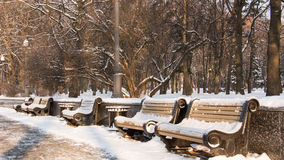 Snow-covered bench in a city park Royalty Free Stock Images