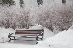 Snow-covered bench in city park Royalty Free Stock Photo