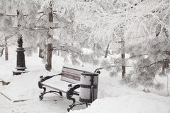 Snow-covered bench in city park Stock Photography