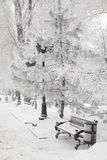 Snow-covered bench in city park Royalty Free Stock Photos