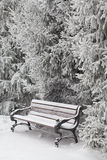 Snow-covered bench in city park Stock Images
