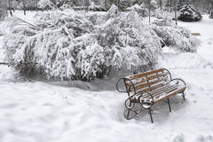 Snow-covered bench in city park at winter day Royalty Free Stock Photography