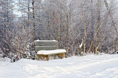 Snow-covered bench by forest road. Snow-covered wooden bench by forest road Stock Images