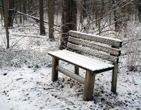 Snow covered bench in forest in winter Royalty Free Stock Photos