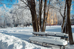 Snow covered bench near the trees Royalty Free Stock Photography
