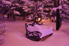 Snow covered bench in the park at night Stock Photos
