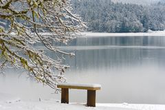 Henry Hagg Lake winter landscape Royalty Free Stock Photography