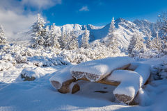 Snow covered bench on a trail in Tatra Mountains Royalty Free Stock Photos