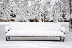 Snow Covered Bench. Bench on the waterfront covered in snow in Portland, Oregon Royalty Free Stock Photos