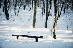 Snow covered bench in winter forest Stock Photo
