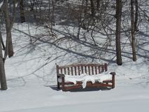 Snow-Covered Bench royalty free stock image