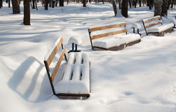 Snow covered benches Stock Photos