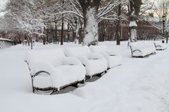 Snow Covered Benches Stock Photography