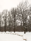 Snow covered benches on glade of urban park Royalty Free Stock Photo