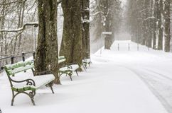 Snow Covered Benches In A Park Stock Photo