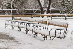 Snow-covered benches Royalty Free Stock Images